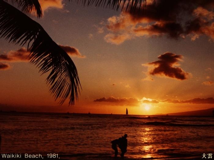 하와이 와이키키해변81